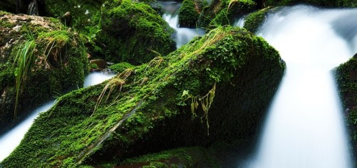 creek-21749_1280-1350-x-900