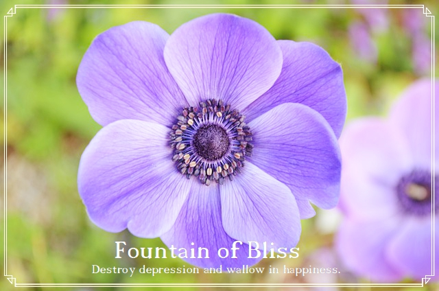 Fountain of Bliss Ennochian XSigil