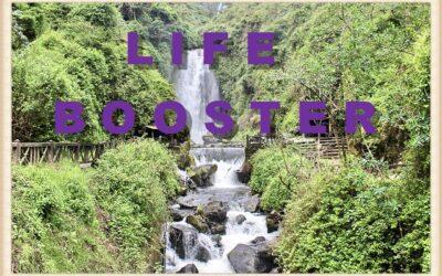 Life Booster XSigil